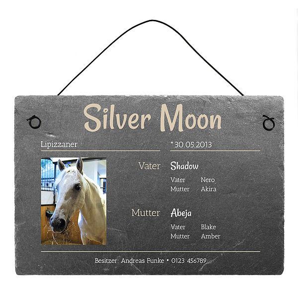 Individuellfotogeschenke - Geschenk für Reiter Stallschild aus Schiefer mit Foto 300 x 200 mm - Onlineshop 1a Geschenkeshop